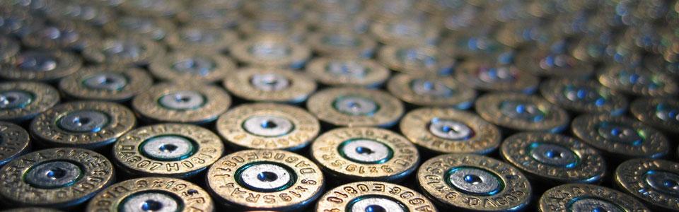 Silah Ruhsatı Dosya Takip